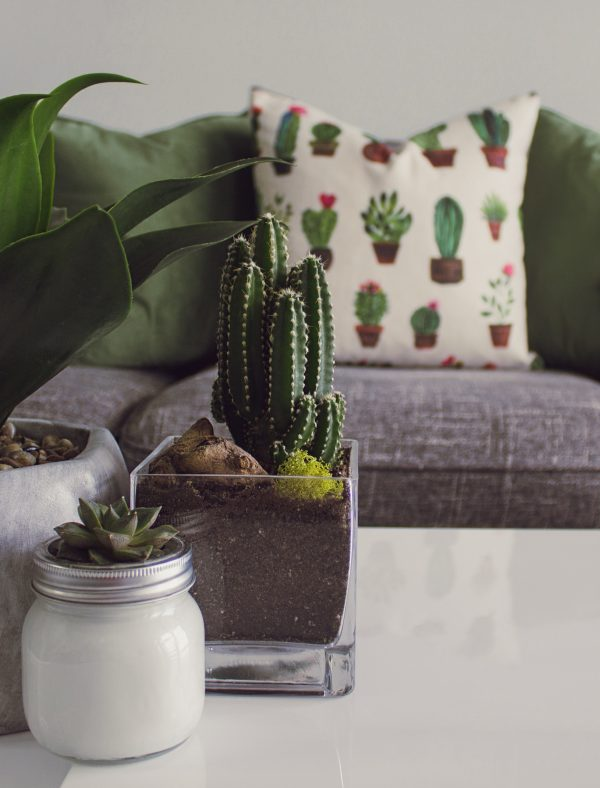 Bring Summer Inside Your Home