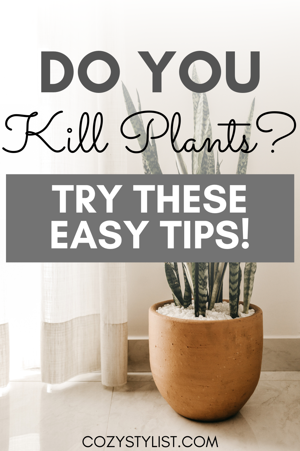 kill plants pinterest